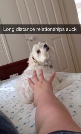 Funny_Snapchats_17