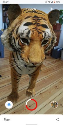 Teraz môžete zaznamenávať 3D zvieratá a objekty Google 3