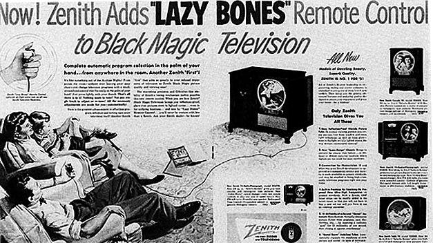 Lười xương đen Truyền hình