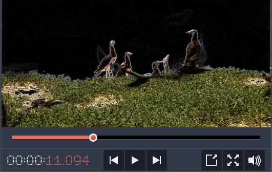 como fazer um vídeo em tela dividida