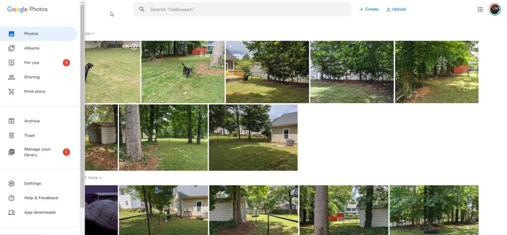 Após o novo design para dispositivos móveis, o Google Fotos simplifica a navegação na Web 1